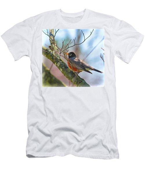 Robin Men's T-Shirt (Athletic Fit)