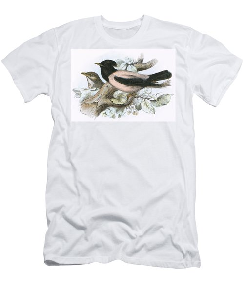 Rose Coloured Starling Men's T-Shirt (Athletic Fit)