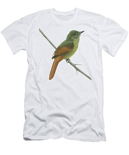 Rufous Tailed Flatbill  Men's T-Shirt (Athletic Fit)