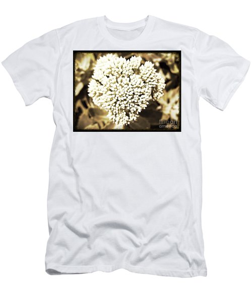 Men's T-Shirt (Slim Fit) featuring the painting Sedum In The Heart by Kimberlee Baxter