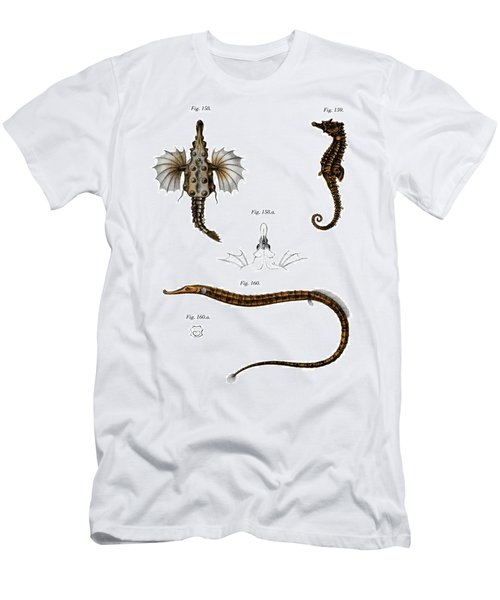 Short Dragonfish Men's T-Shirt (Athletic Fit)