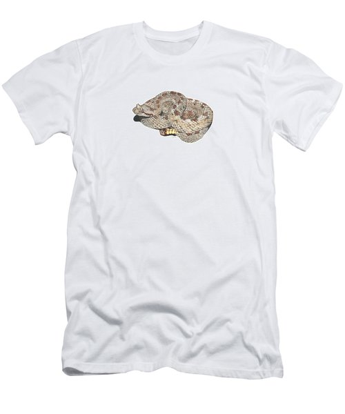 Sidewinder Men's T-Shirt (Slim Fit) by Cindy Hitchcock