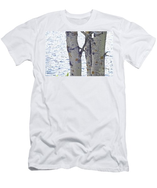 Silver Birch Trees At A Sunny Lake Men's T-Shirt (Athletic Fit)