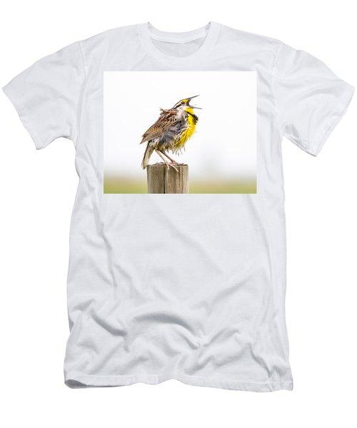 Singing Meadowlark 3rd Of 3 Men's T-Shirt (Athletic Fit)
