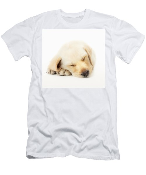 Sleeping Labrador Puppy Men's T-Shirt (Athletic Fit)