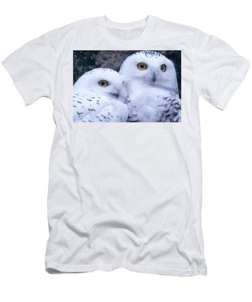 Snowy Owls Men's T-Shirt (Athletic Fit)
