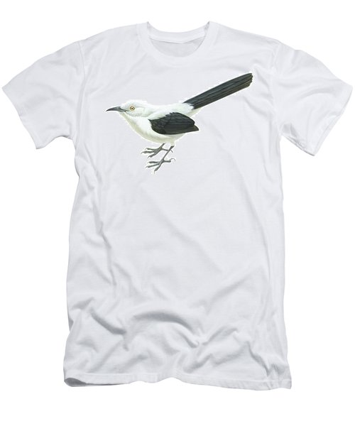 Southern Pied Babbler  Men's T-Shirt (Athletic Fit)