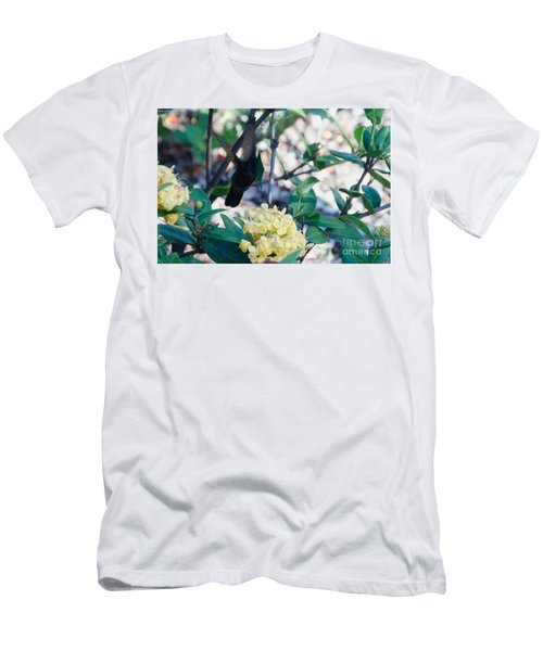 St. Lucian Hummingbird Men's T-Shirt (Athletic Fit)