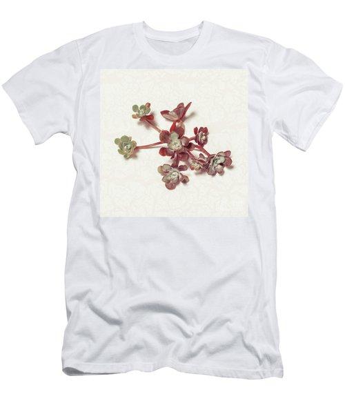 Succulent Plant 1 Men's T-Shirt (Athletic Fit)