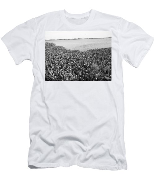 Men's T-Shirt (Slim Fit) featuring the photograph Swamp Hyacinths Water Lillies Black And White by Joseph Baril