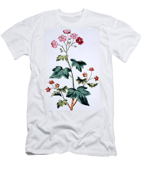 Sweet Canada Raspberry Men's T-Shirt (Athletic Fit)