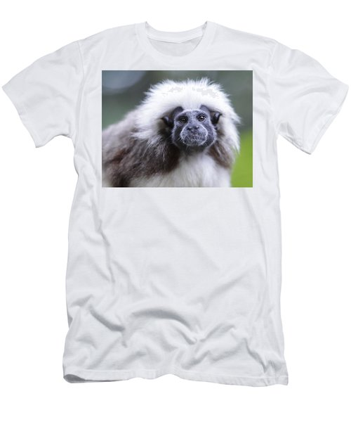 Men's T-Shirt (Slim Fit) featuring the photograph Tamarins Face by Shoal Hollingsworth