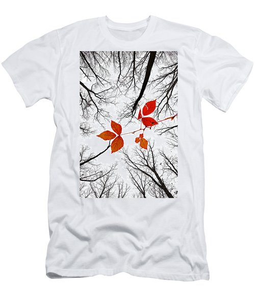 The Last Leaves Of November Men's T-Shirt (Athletic Fit)