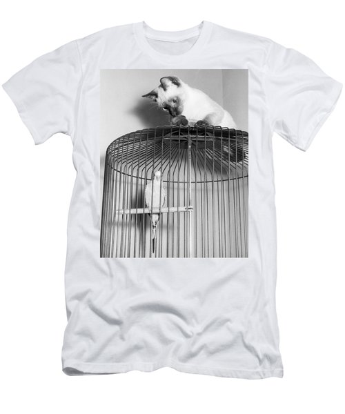 The Parakeet And The Cat Men's T-Shirt (Athletic Fit)