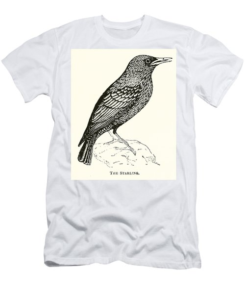 The Starling Men's T-Shirt (Slim Fit) by English School