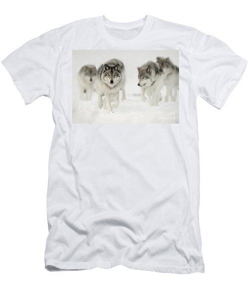 Timber Wolf Pictures 65 Men's T-Shirt (Athletic Fit)