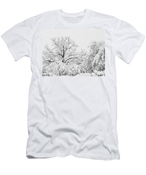 Tree Snow Men's T-Shirt (Athletic Fit)