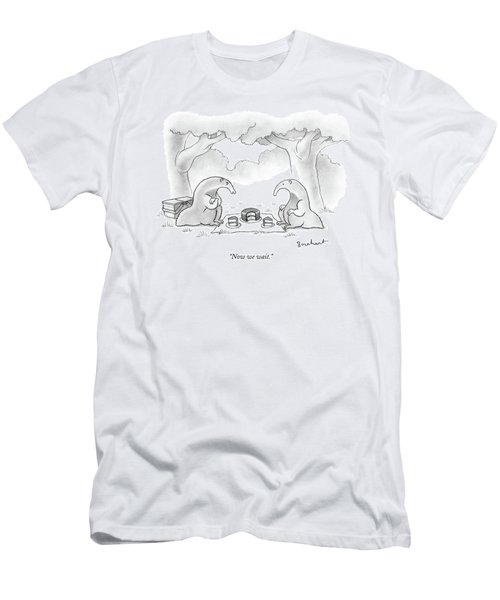 Two Anteaters On A Picnic Wait For Ants To Come Men's T-Shirt (Athletic Fit)