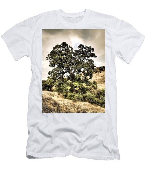 Valley Oak Men's T-Shirt (Athletic Fit)