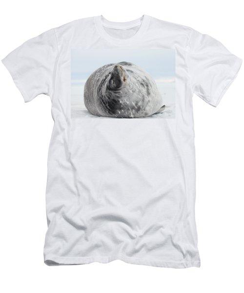 Weddell Seal T-Shirts | Fine Art America