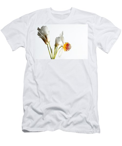 White Sparmannia Africana Plant. Men's T-Shirt (Athletic Fit)