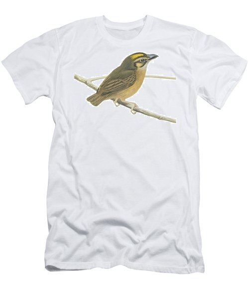 White Throated Spadebill Men's T-Shirt (Athletic Fit)