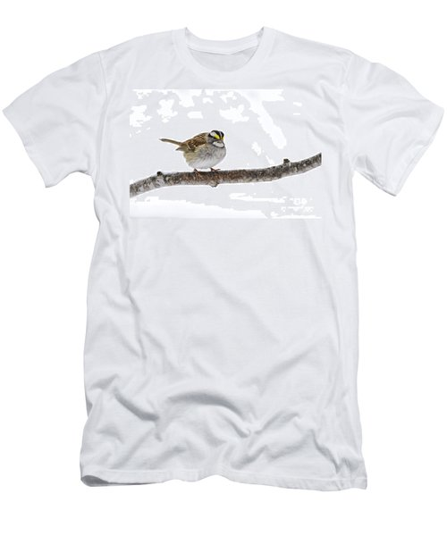 White-throated Sparrow Men's T-Shirt (Athletic Fit)