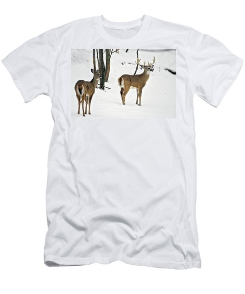 Whitetail Deer In Snow Odocoileus Men's T-Shirt (Athletic Fit)