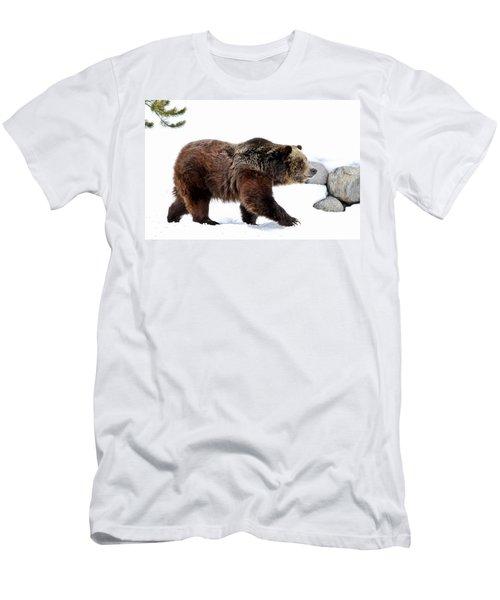 Winter Bear Walk Men's T-Shirt (Slim Fit) by Athena Mckinzie