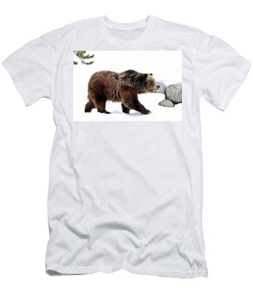 Winter Bear Walk Men's T-Shirt (Athletic Fit)