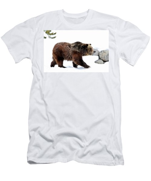 Winter Bear Walk Men's T-Shirt (Athletic Fit)