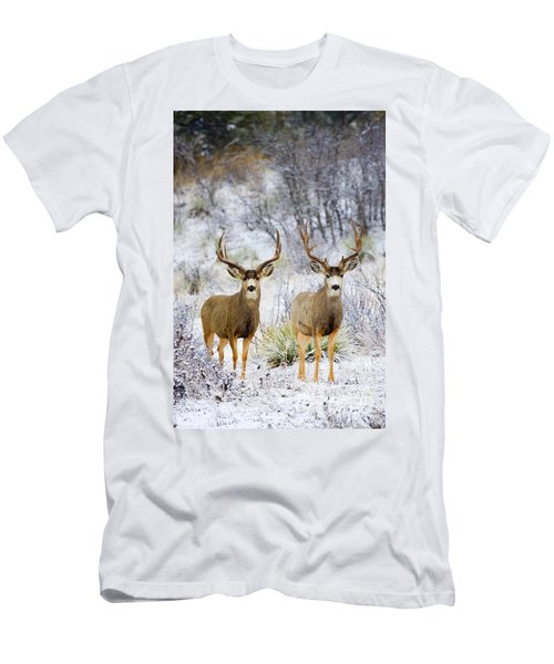 Winter Bucks Men's T-Shirt (Athletic Fit)