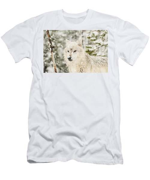 Wolf In Snow Men's T-Shirt (Athletic Fit)