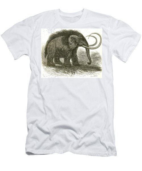 Woolly Mammoth Men's T-Shirt (Athletic Fit)