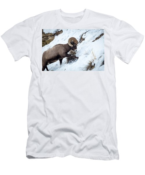 Yellowstone Bighorn Men's T-Shirt (Athletic Fit)