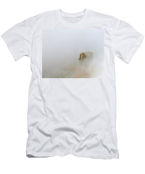 Yellowstone Bison Men's T-Shirt (Athletic Fit)