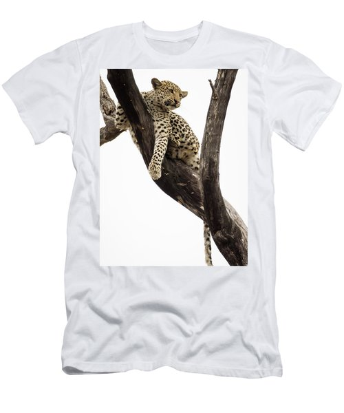 Young Leopard Panthera Pardus In Tree Men's T-Shirt (Athletic Fit)