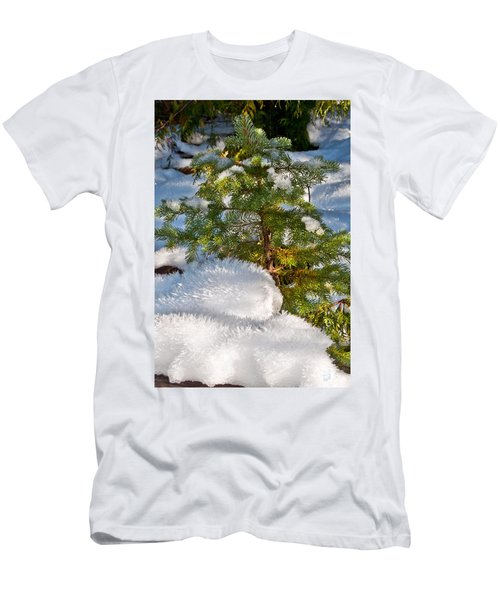 Young Winter Pine Men's T-Shirt (Athletic Fit)