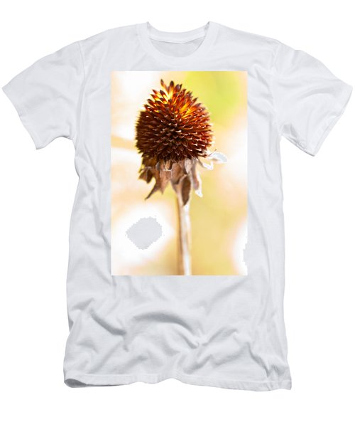 Black-eyed Susan After The Winter Men's T-Shirt (Athletic Fit)