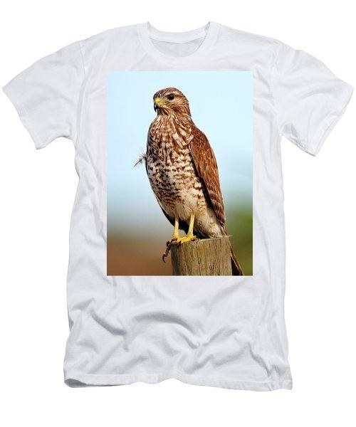 Portrait Of A Red Shouldered Hawk Men's T-Shirt (Athletic Fit)