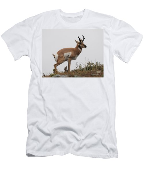 Antelope Critiques Photography Men's T-Shirt (Athletic Fit)