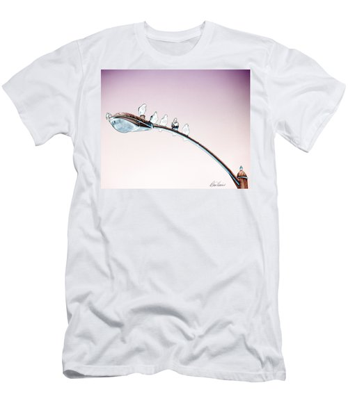 Birds On A Streetlight Men's T-Shirt (Athletic Fit)
