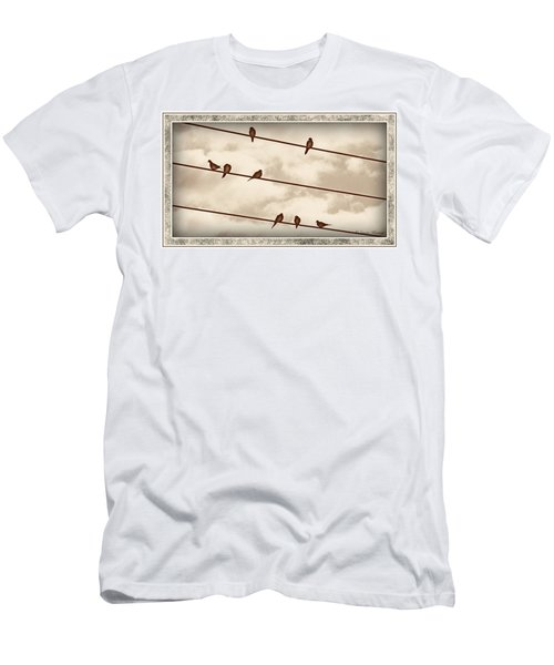 Birds On Wires Men's T-Shirt (Athletic Fit)