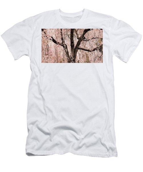 Blossom Rain Men's T-Shirt (Athletic Fit)