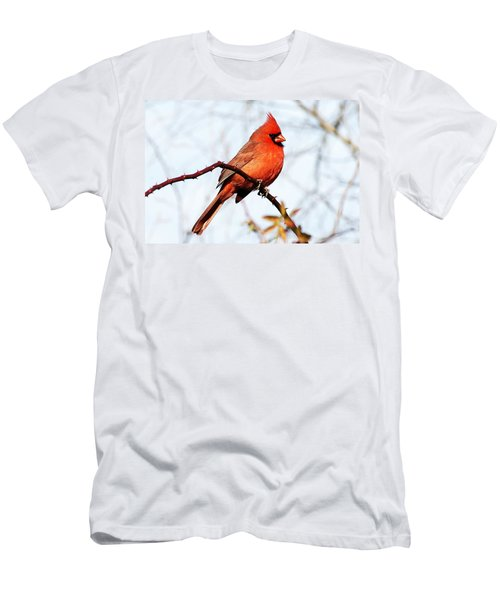 Cardinal 1 Men's T-Shirt (Slim Fit) by Joe Faherty