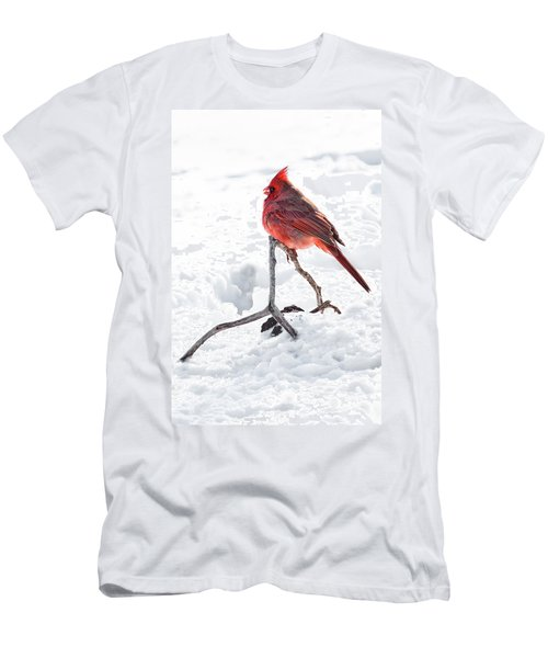 Men's T-Shirt (Slim Fit) featuring the photograph Cardinal's Song by Tamyra Ayles