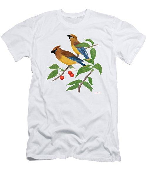 Cedar Waxwing Men's T-Shirt (Athletic Fit)