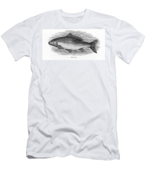 Fish: Carp Men's T-Shirt (Athletic Fit)