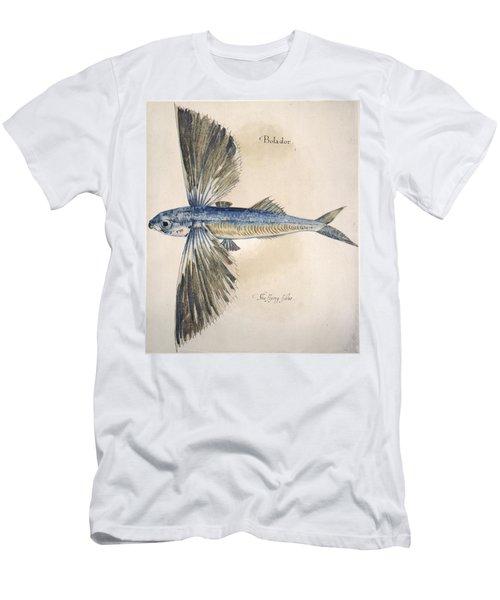 Flying-fish, 1585 Men's T-Shirt (Athletic Fit)