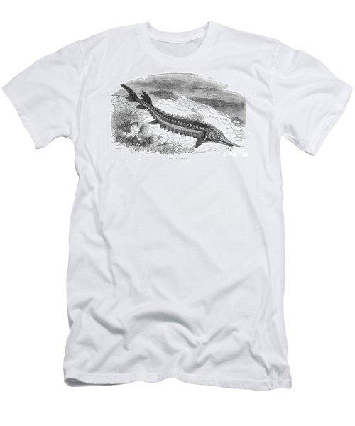 Giant Sturgeon Men's T-Shirt (Athletic Fit)